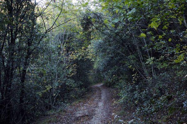 sentieri fonti sassovivo